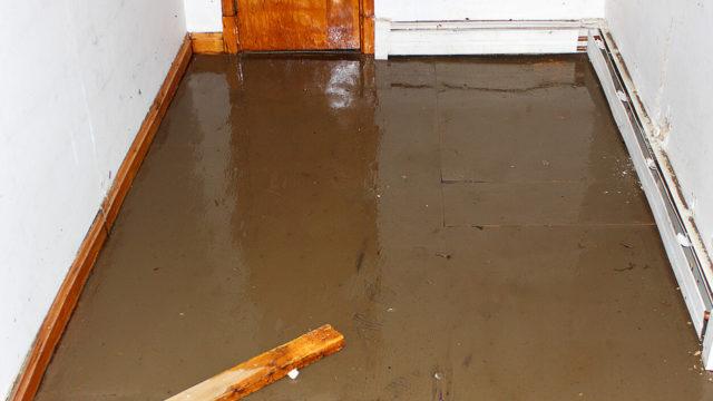 Sewage Damage Cleaning